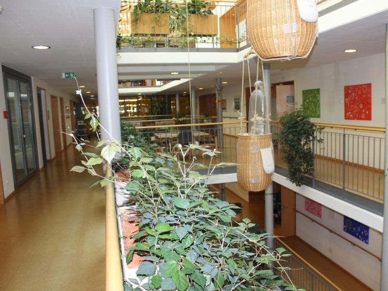 Kunst Betreuungs-Zentrum Heiden